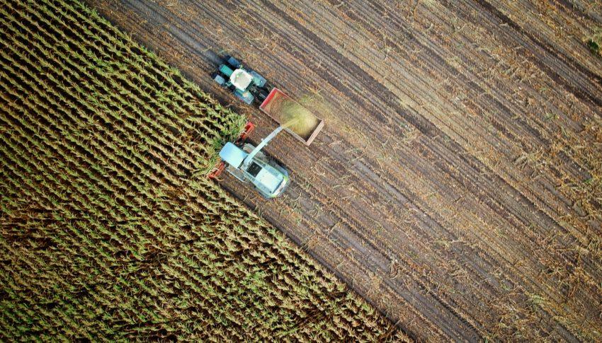 Extra steun voor investeringen op land- en tuinbouwbedrijven
